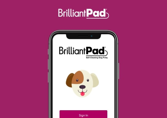 BrilliantPad